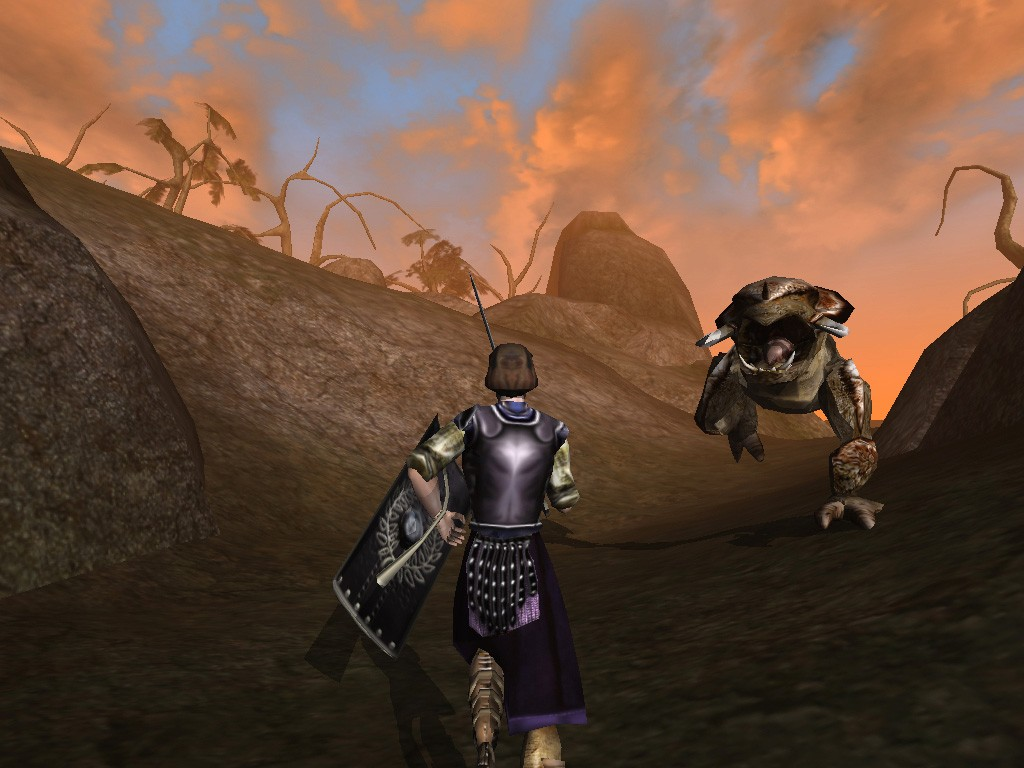 Game The Elder Scrolls III: Morrowind » The Elder Scrolls ...