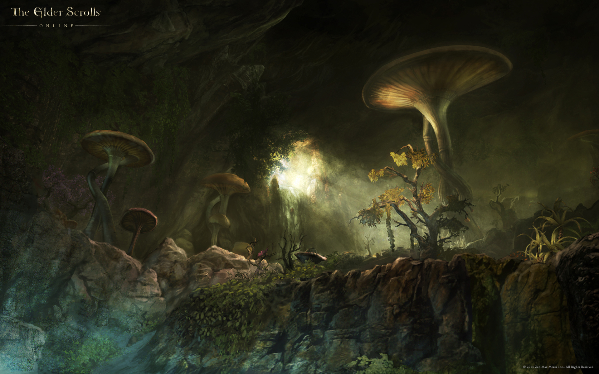 Wallpaper The Elder Scrolls Online: Fungal Grotto