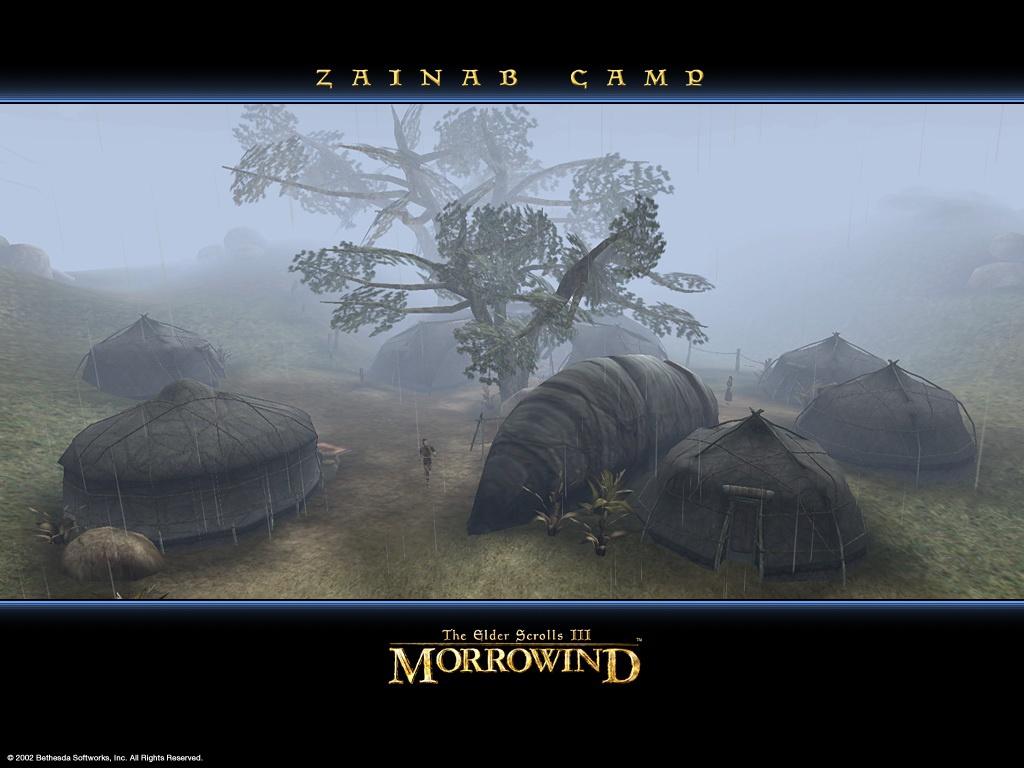 "Wallpaper The Elder Scrolls III: Morrowind ""Zainab camp"""
