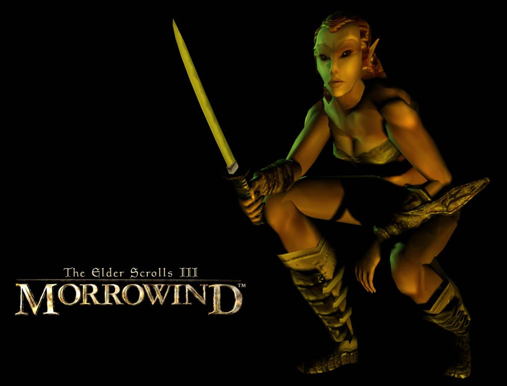 "Wallpaper The Elder Scrolls III: Morrowind ""Elf"""