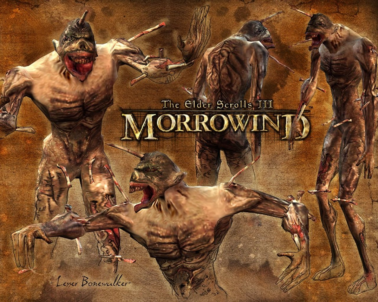 "Wallpaper The Elder Scrolls III: Morrowind ""Lesser bonewalker"""