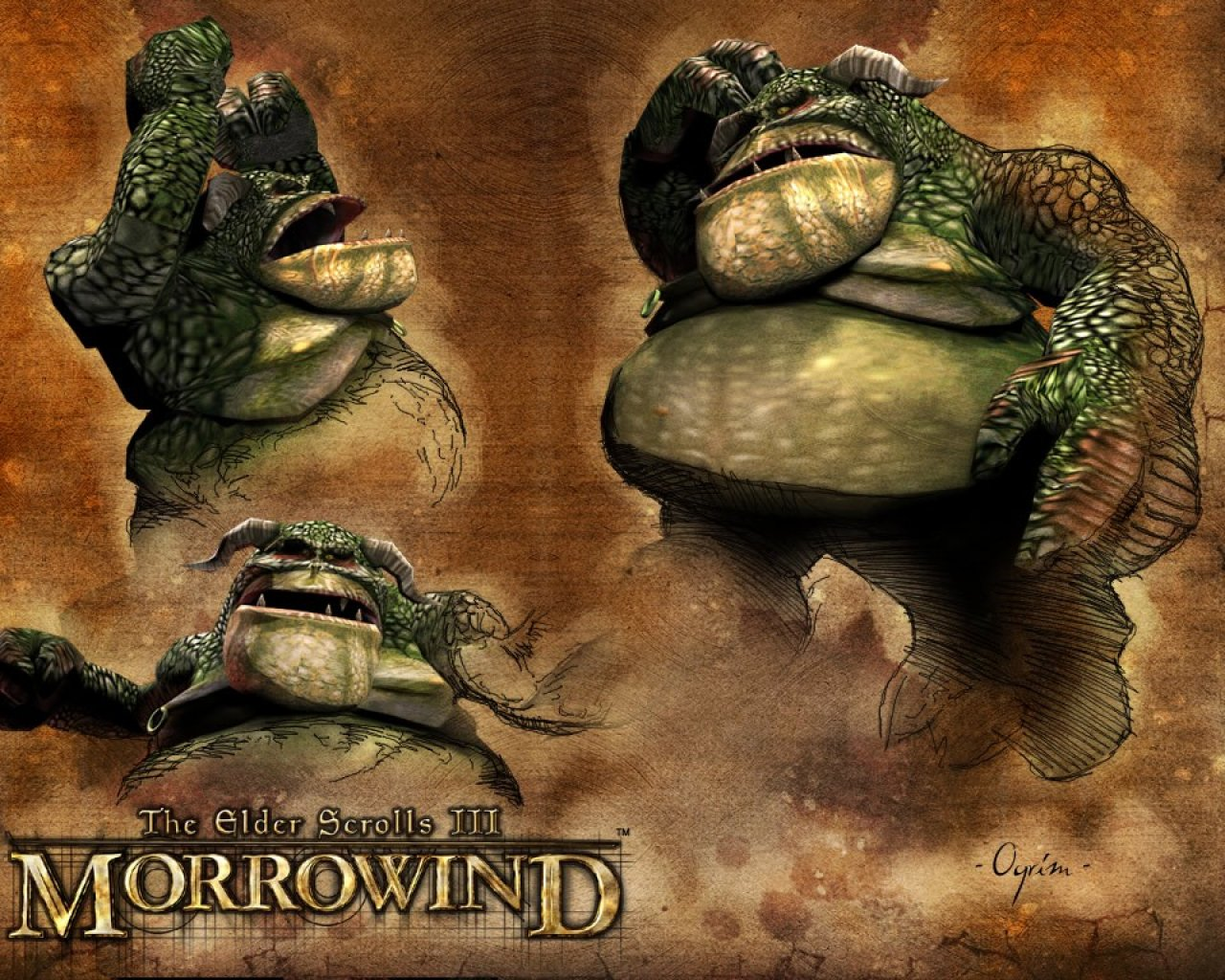 "Wallpaper The Elder Scrolls III: Morrowind ""Ogrim"""