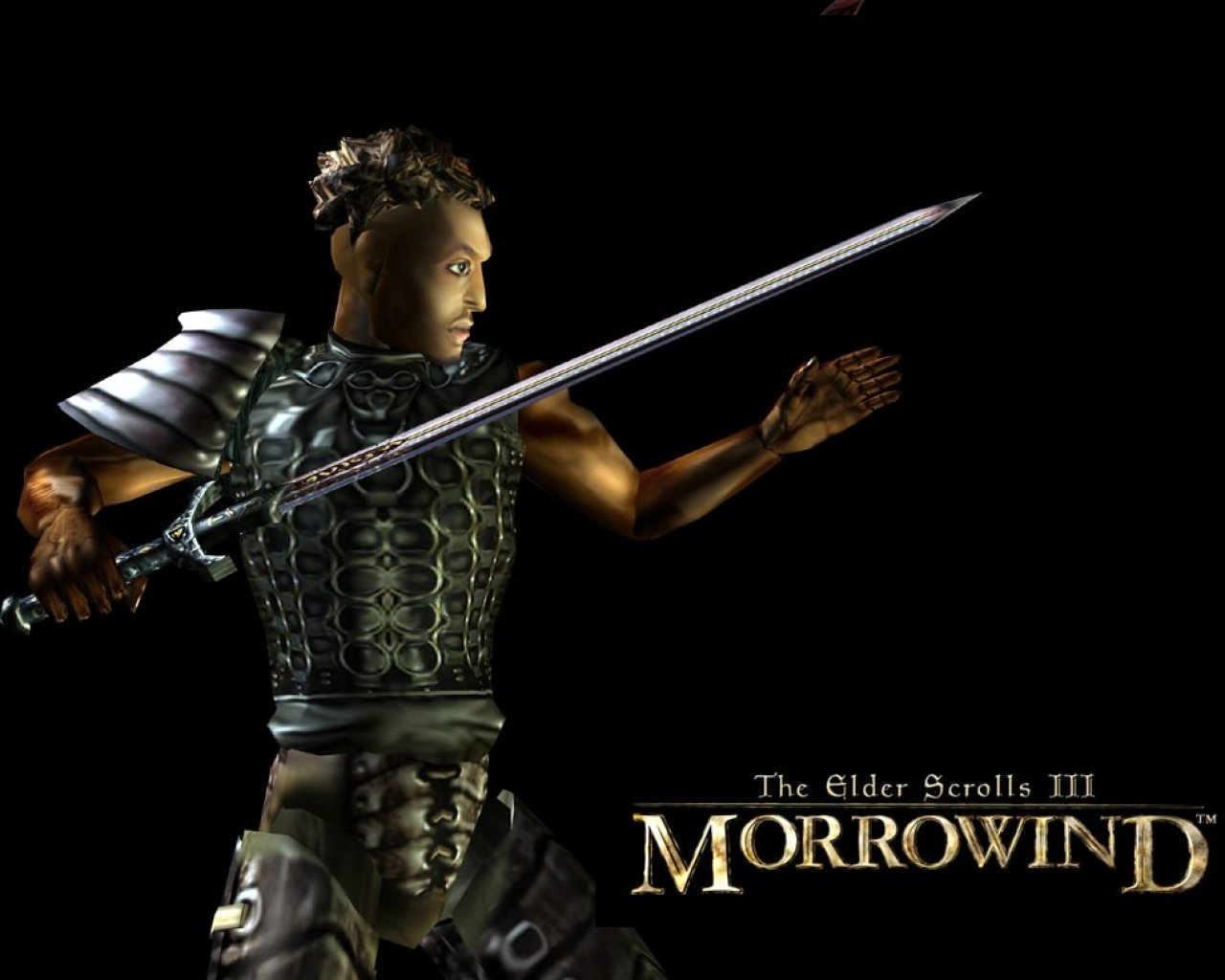 "Wallpaper The Elder Scrolls III: Morrowind ""Swordsman"""
