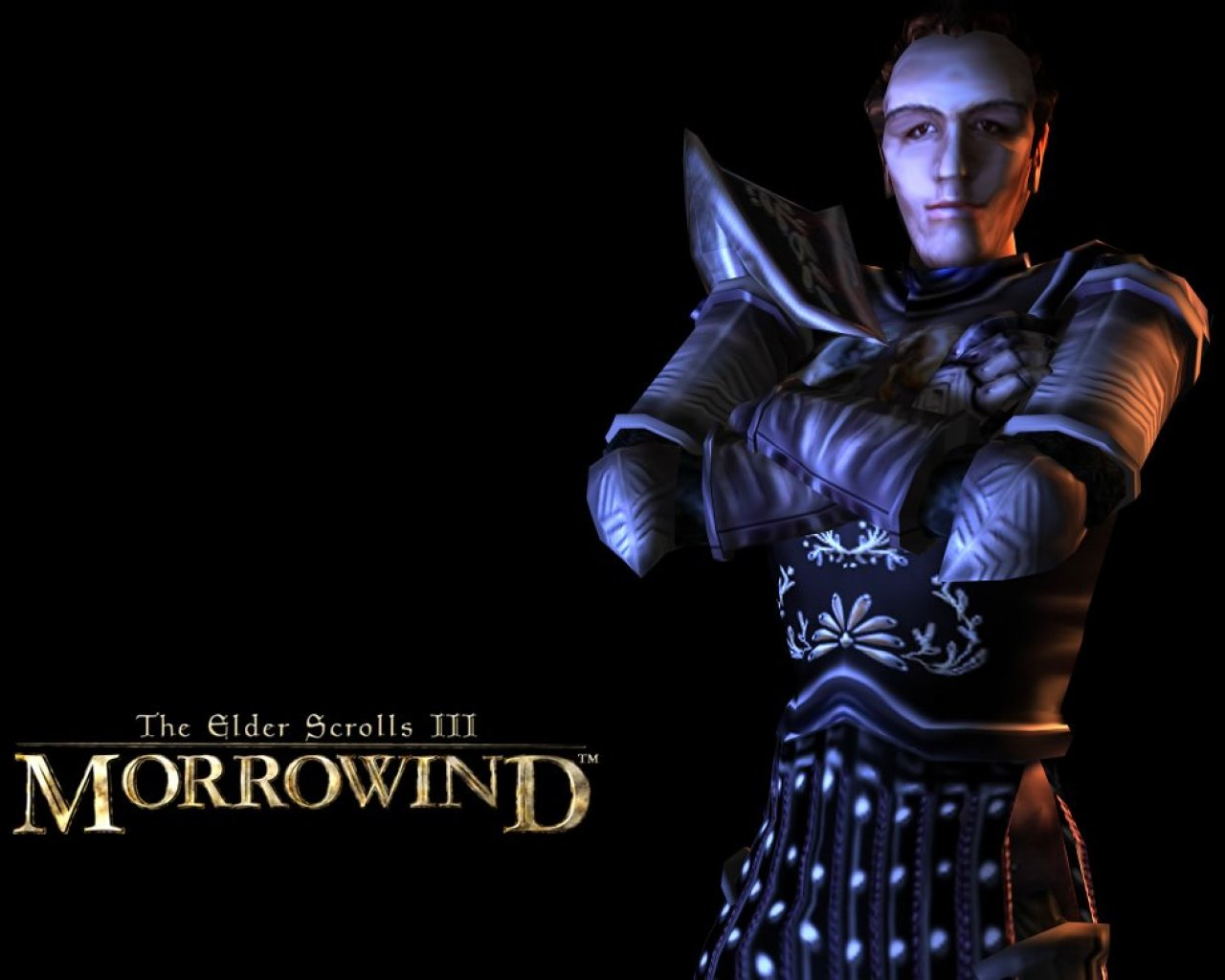 "Wallpaper The Elder Scrolls III: Morrowind ""Security"""