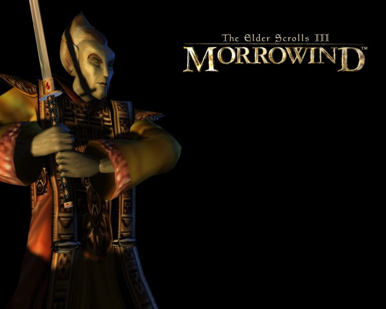 "Wallpaper The Elder Scrolls III: Morrowind ""Protection"""