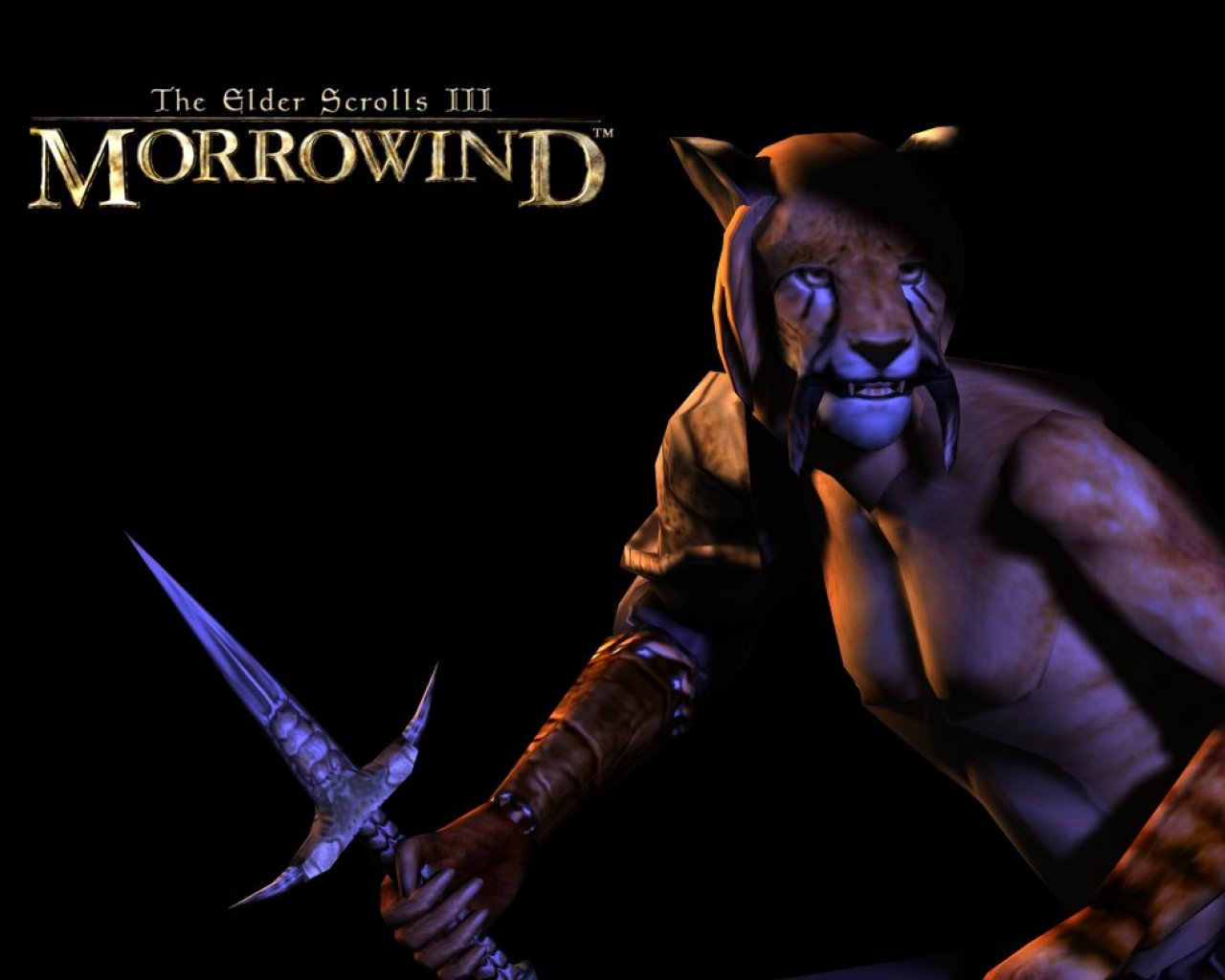 "Wallpaper The Elder Scrolls III: Morrowind ""Khajiit"""