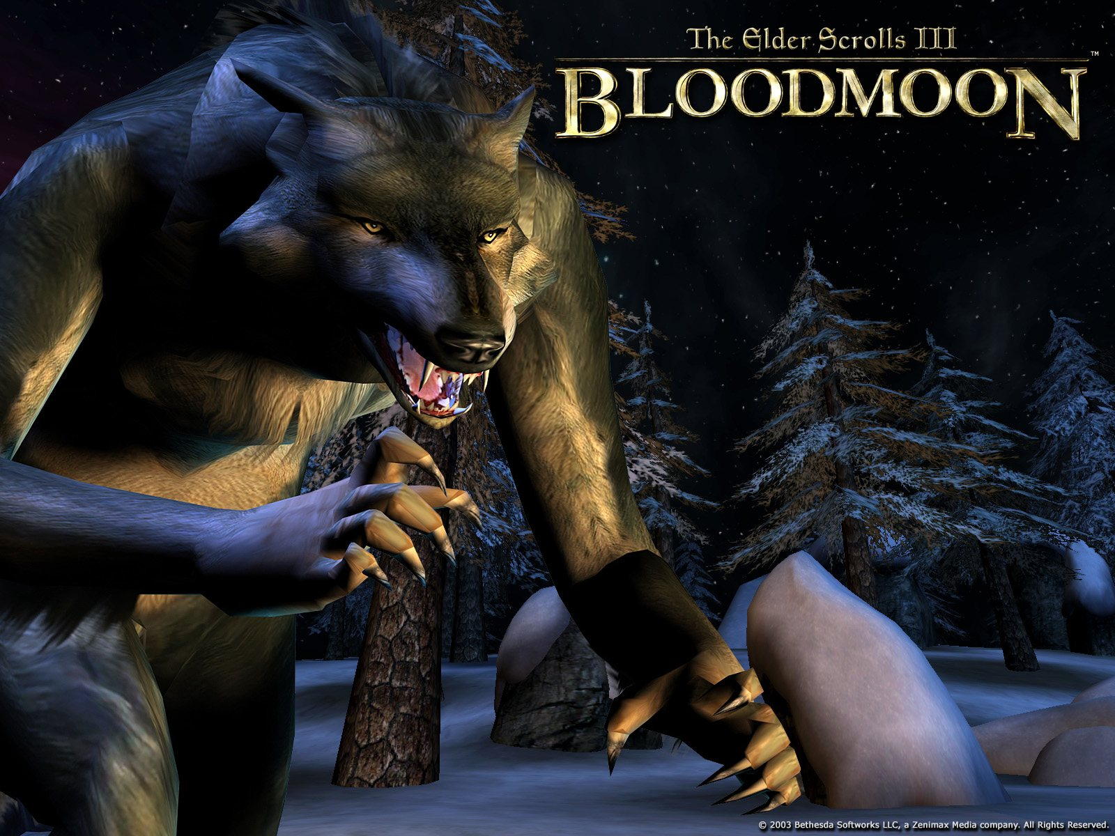 "Wallpaper The Elder Scrolls III: Bloodmoon ""Werewolf"""
