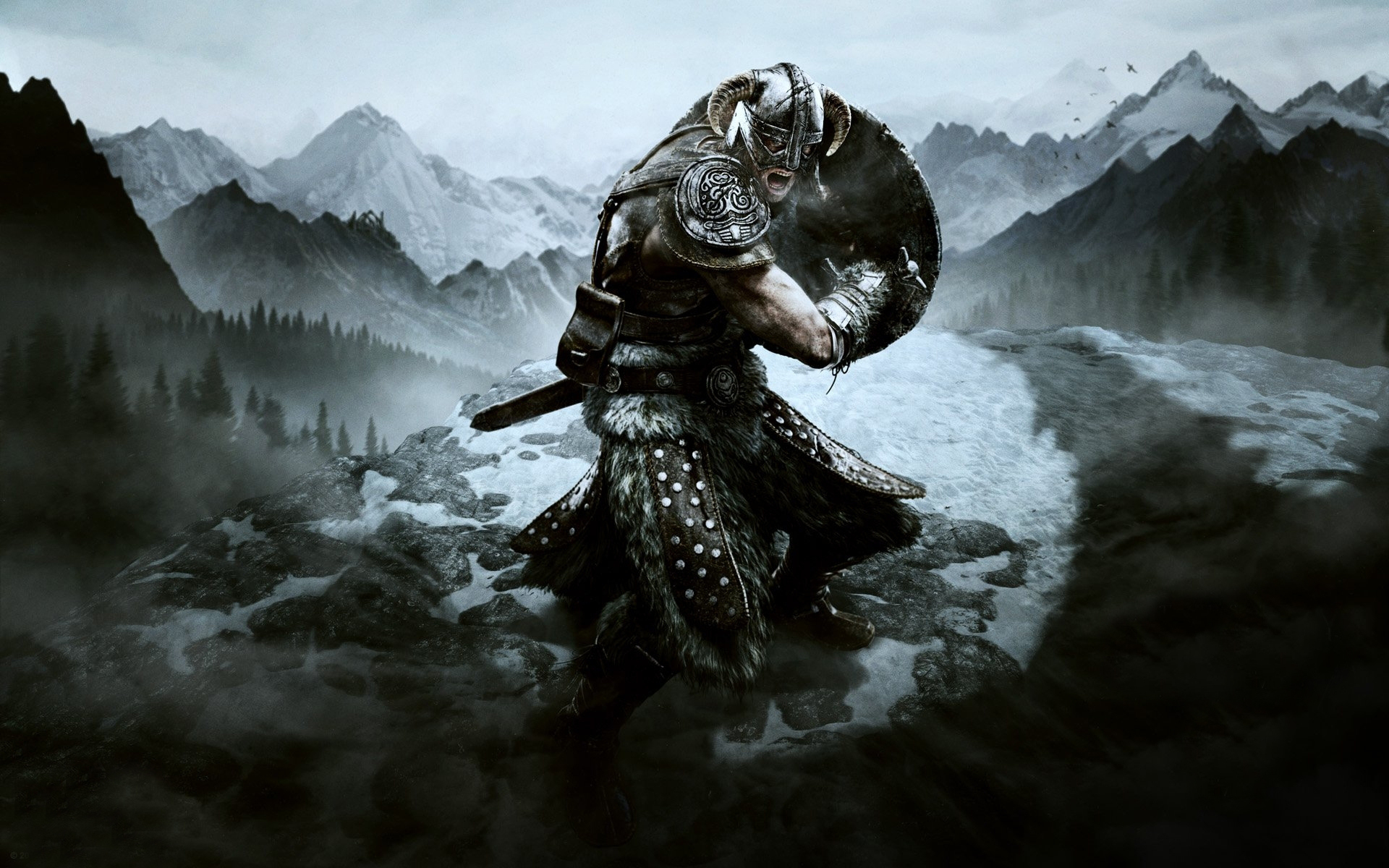 The Elder Scrolls V: Skyrim wallpaper Warrior with shield