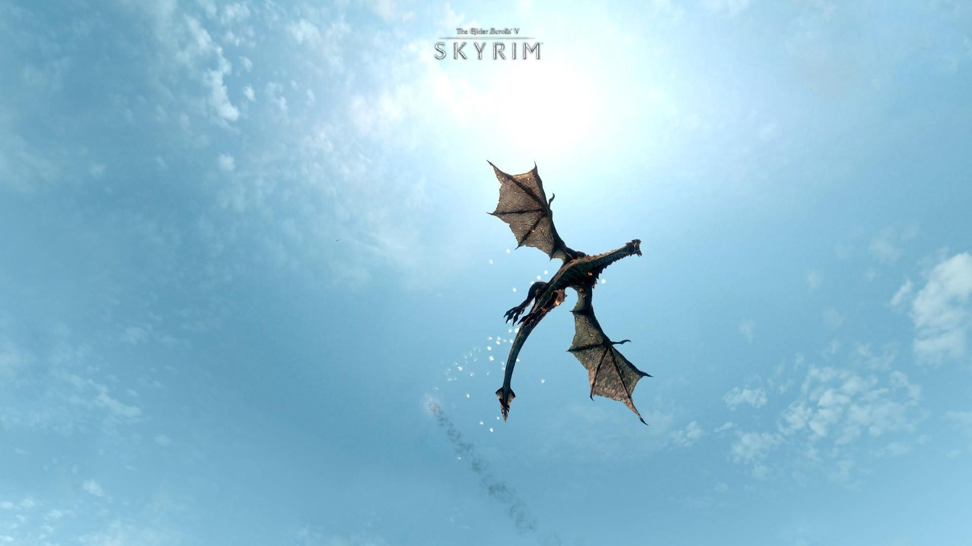 Wallpaper The Elder Scrolls V: Skyrim flying dragon
